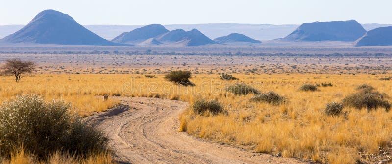 Um fim da tarde, largo-colhido, a vista das planícies e os montes pontilharam em torno da área da natureza de Namib-Naukluft em N fotografia de stock royalty free