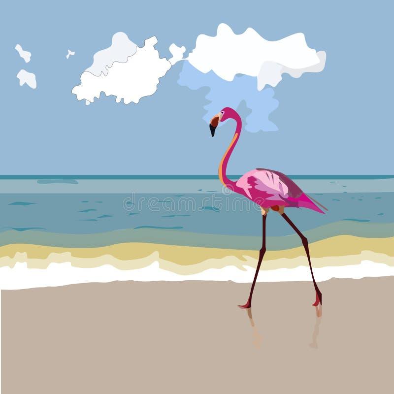 Um flamingo do rosa selvagem fotografia de stock