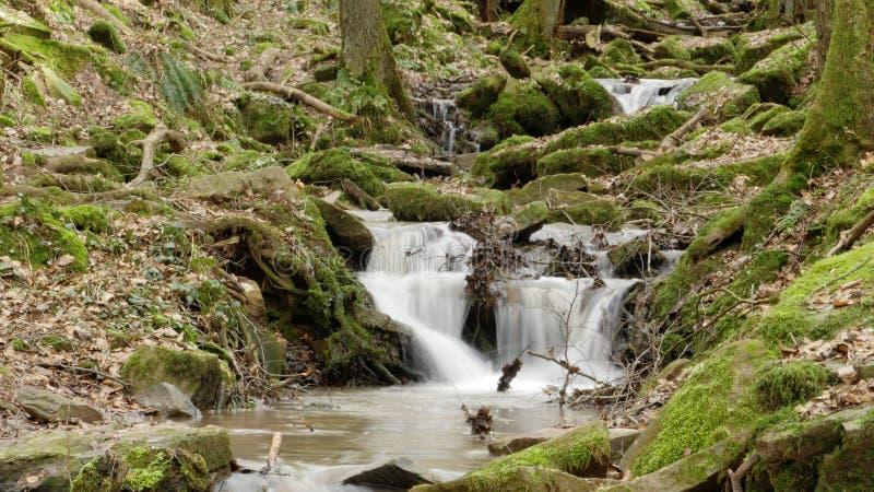 Um fluxo/cachoeira do rio no Margarethenschlucht imagem de stock