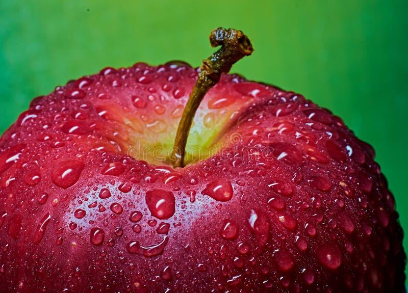 Um fragmento de Apple vermelho com gotas da água Macro, close-up fotografia de stock