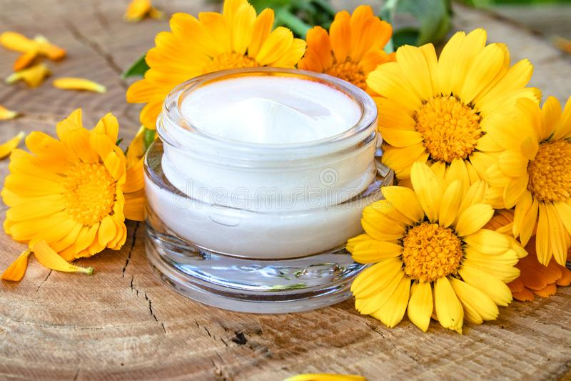 Um frasco do creme cosmético branco para o cuidado do corpo Flores alaranjadas frescas do calendula no fundo de madeira foto de stock