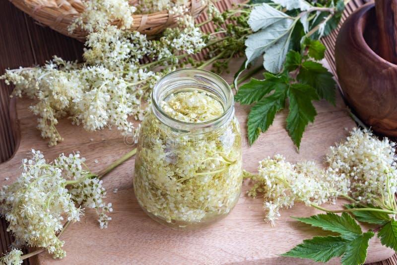 Um frasco encheu-se com as flores e o álcool do meadowsweet, para preparar t imagem de stock