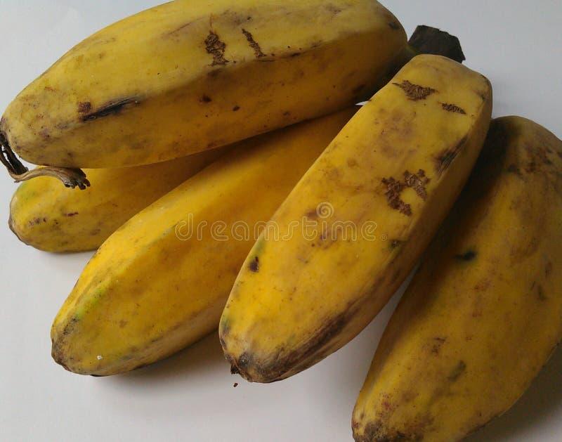 Um fruto da banana do kepok de Indonésia do grupo oh fotos de stock