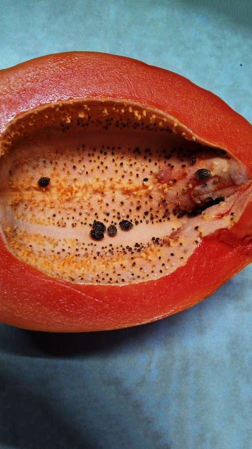 Um fruto tão bonito da papaia com frescor fotografia de stock