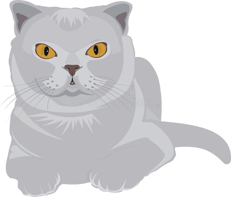 Um gato cinzento ilustração do vetor