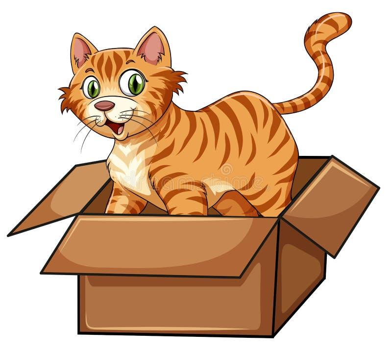 Um gato na caixa ilustração stock