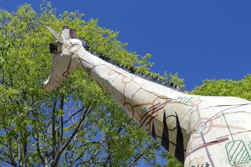 Um girafa na cidade fotografia de stock royalty free