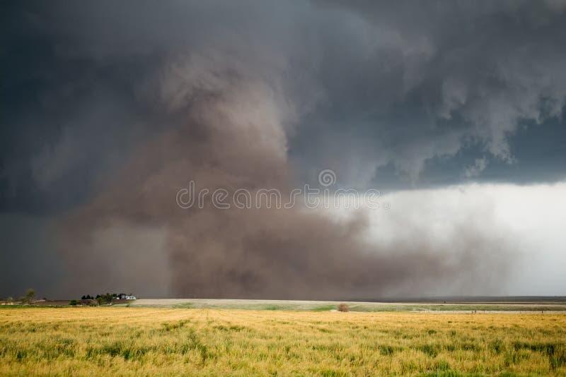 Um grande furacão enche o ar com uma nuvem enorme da poeira sob uma tempestade fotos de stock royalty free