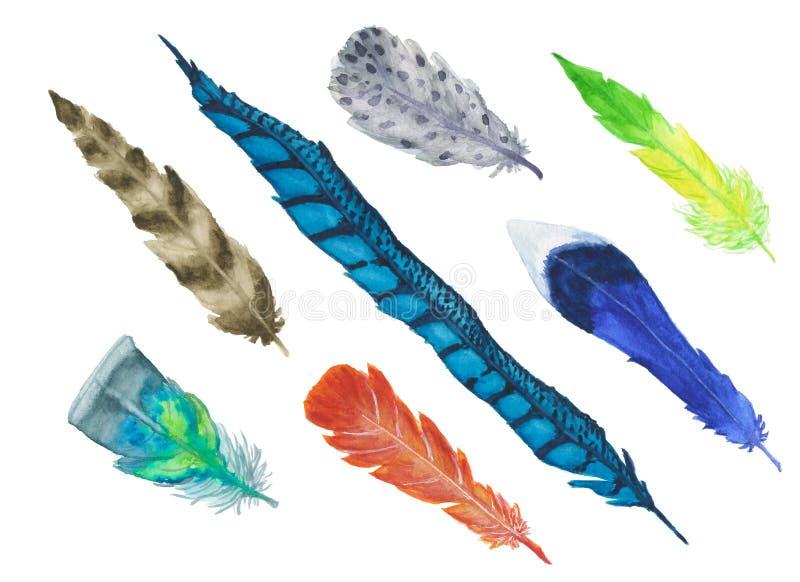 Um grande grupo de penas de pássaro aquarela-pintadas coloridas brilhantes isoladas no fundo branco imagens de stock