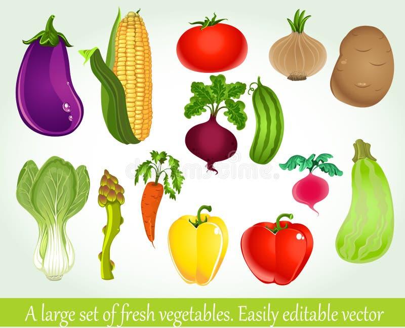Um grande jogo de legumes frescos ilustração royalty free