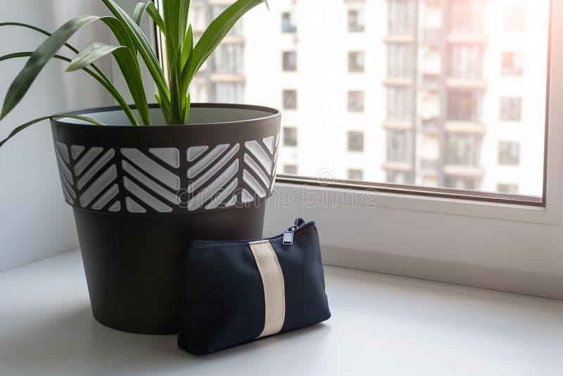 Um grande potenciômetro preto e branco com uma planta verde está em um peitoril largo branco da janela pela janela imagens de stock