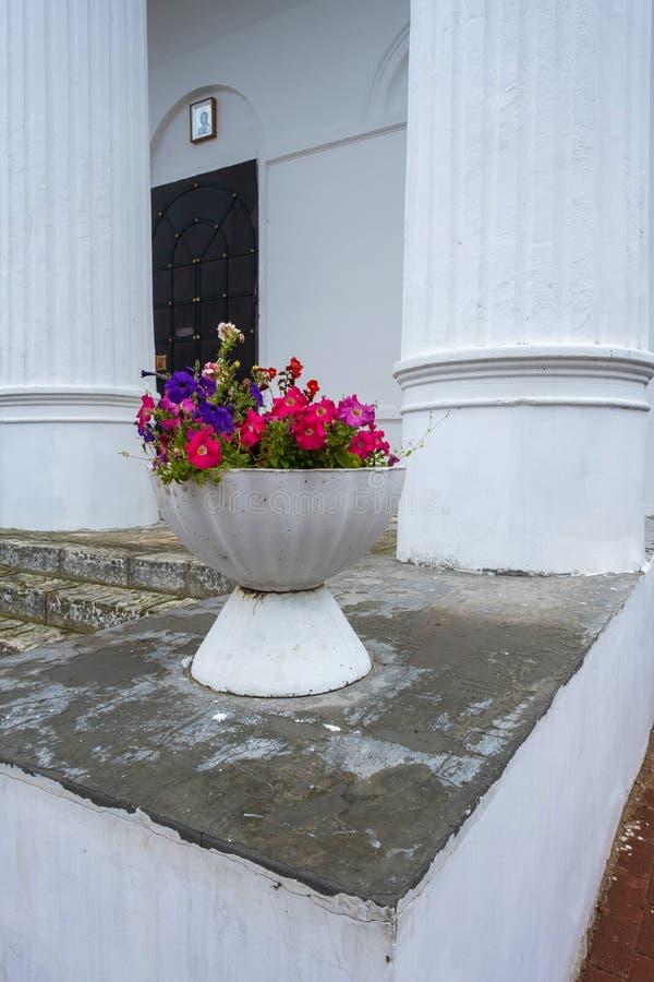 Um grande vaso de pedra branco com as flores vermelhas nas colunas brancas de um templo antigo foto de stock royalty free