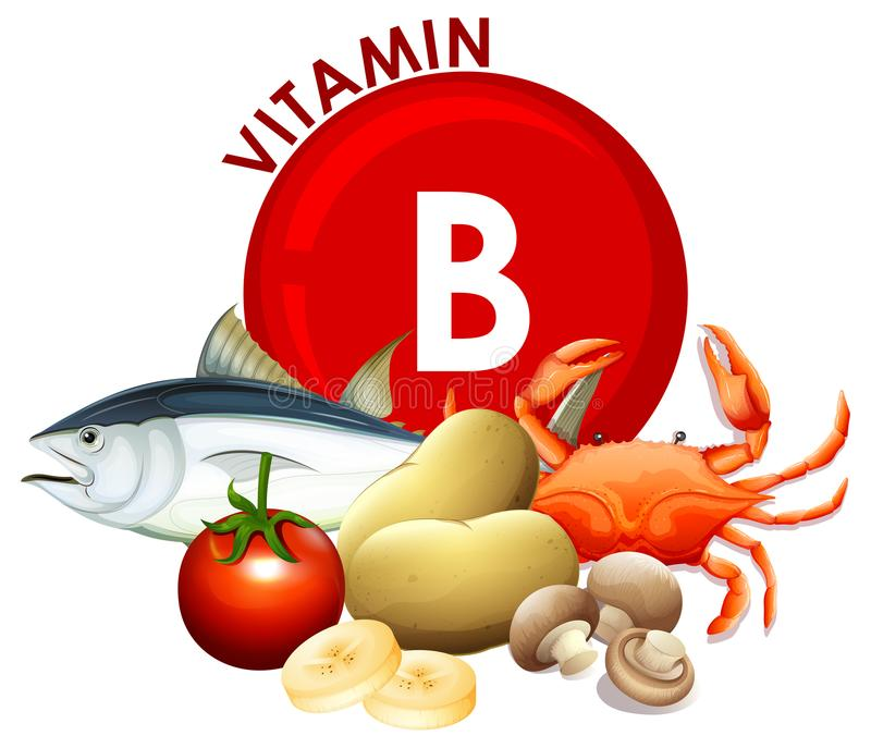 Um grupo de alimento da vitamina B ilustração stock