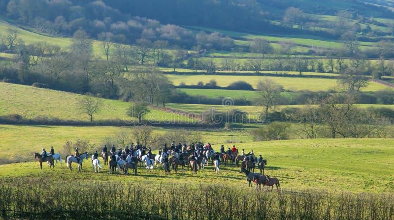 Um grupo de cavaleiros ingleses prontos para a caça do arrasto imagem de stock royalty free