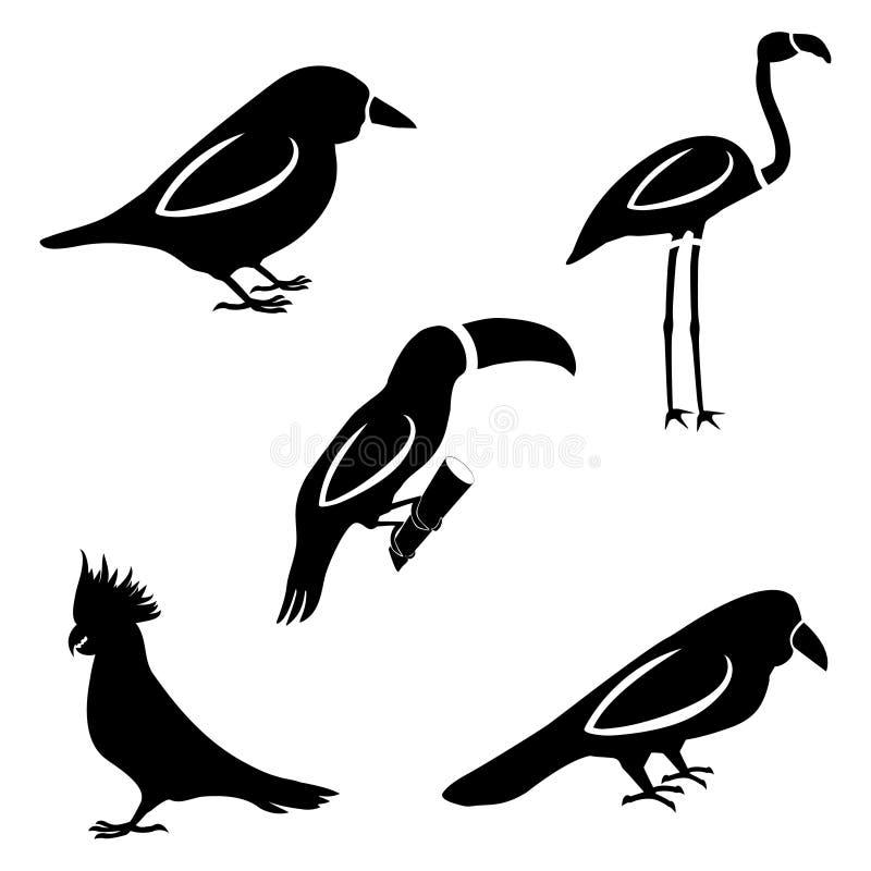 Um grupo de cinco pássaros Silhuetas de um pardal, tucano, papagaio, c ilustração stock