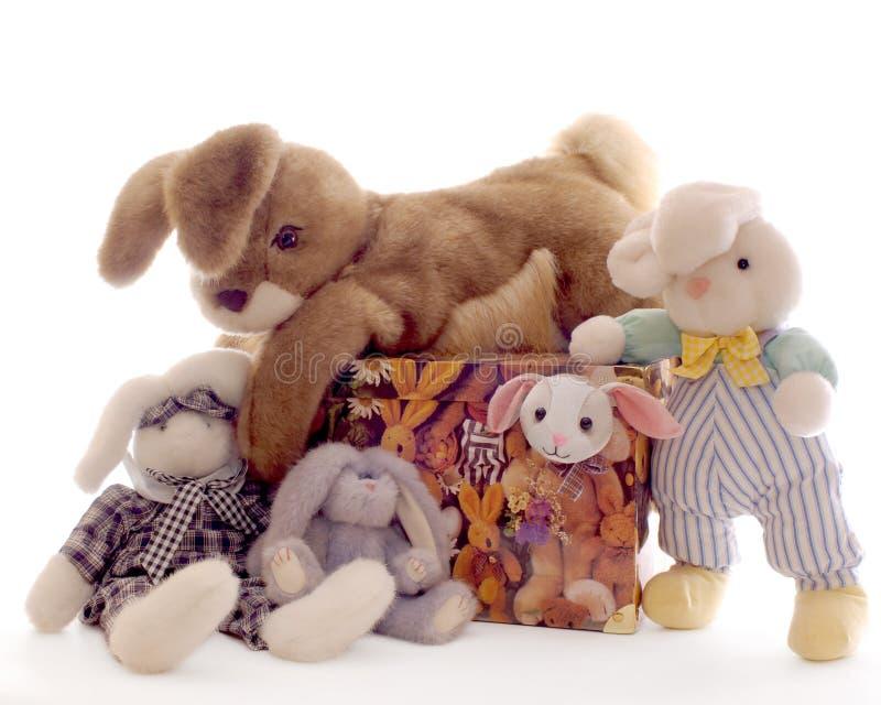 Um grupo de coelhos bonitos fotografia de stock royalty free