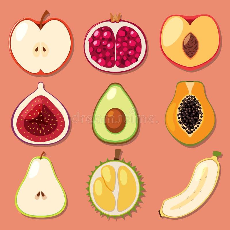 Um grupo de corte do fruto da mistura ilustração do vetor