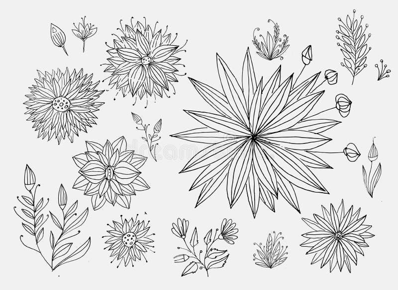 Um grupo de elementos desenhados à mão para a decoração Motivos florais, flores ilustração stock