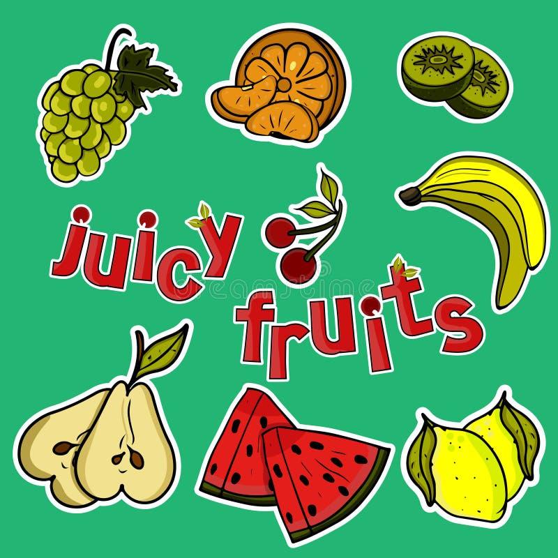 Um grupo de frutos suculentos ilustração do vetor