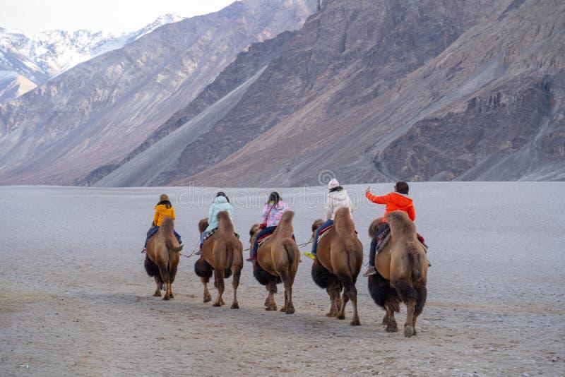 Um grupo de pessoas aprecia montar um camelo que anda em uma duna de areia em Hunder, Hunder é uma vila no distrito de Leh de Jam fotografia de stock royalty free