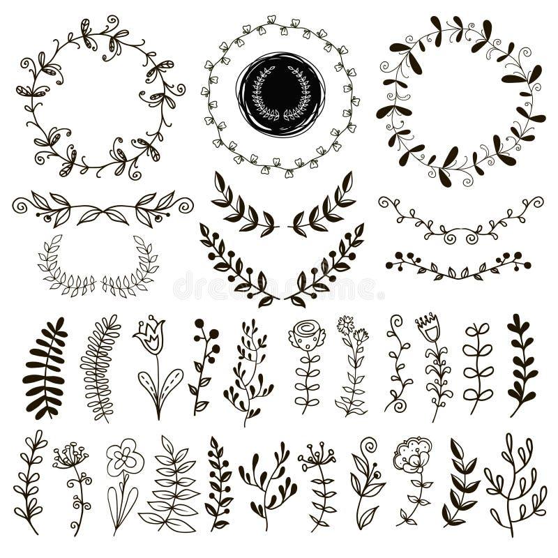 Um grupo de plantas desenhados à mão ilustração royalty free