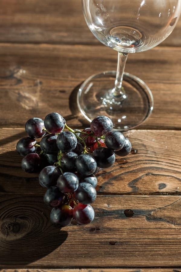 Um grupo de uvas escuras azuis em um vidro de vinho em um fundo escuro em um close-up artificial imagens de stock