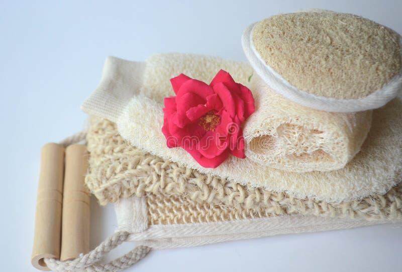 Um grupo de várias escovas cosméticas da massagem do corpo da beleza para a escovadela seca fotos de stock royalty free
