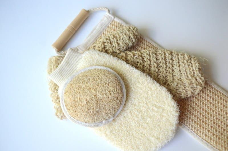 Um grupo de várias escovas cosméticas da massagem do corpo da beleza para a escovadela seca imagem de stock royalty free