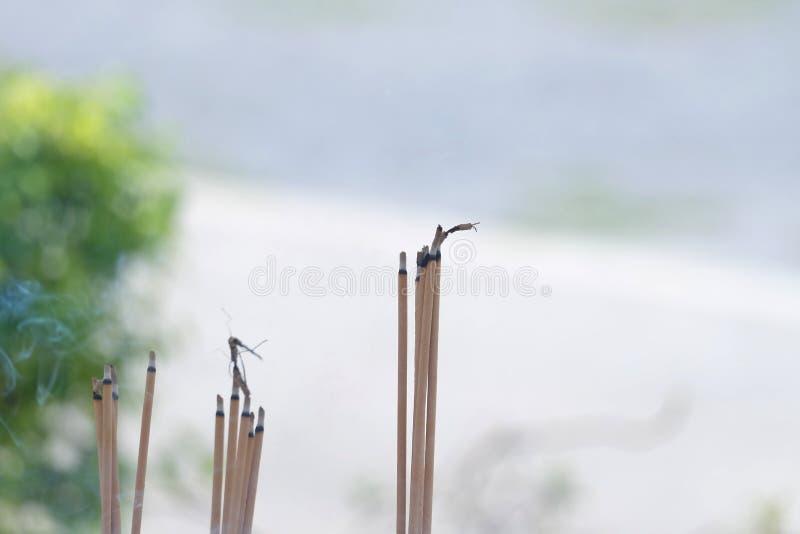 Um grupo de varas de Joss com fumo em um potenciômetro fora do templo da Buda imagem de stock royalty free