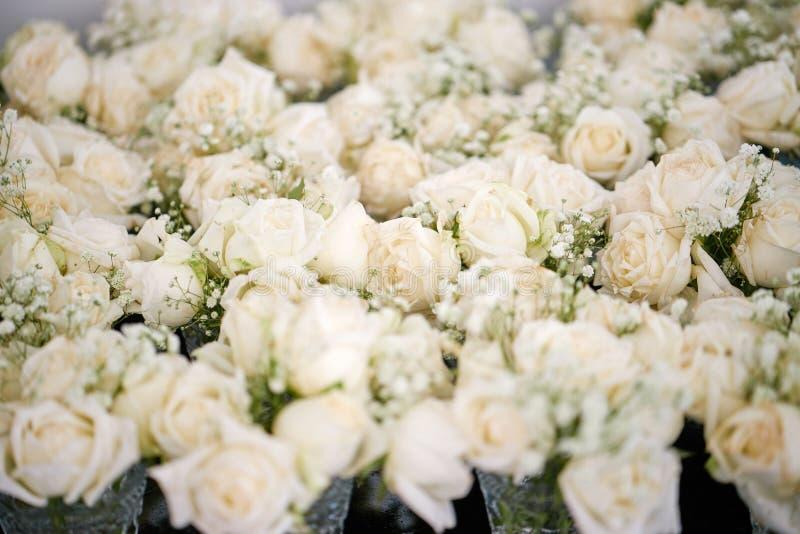Um grupo do branco e das rosas do creme, o gypsophila da respiração do ` s do bebê floresce para a decoração do local de encontro imagens de stock
