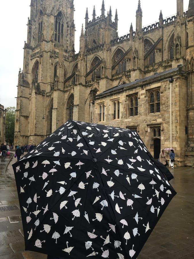 Um guarda-chuva do teste padrão do guarda-chuva na chuva foto de stock royalty free
