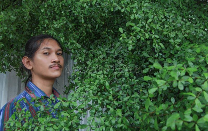 Um homem com um cabelo longo e um bigode que espreitam para fora do bushe fotos de stock