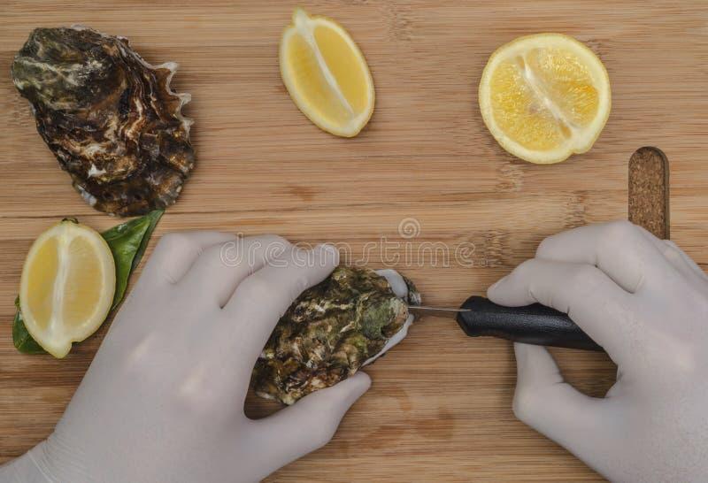Um homem em ostras frescas da preparação de borracha das luvas com uma lâmina fotos de stock royalty free