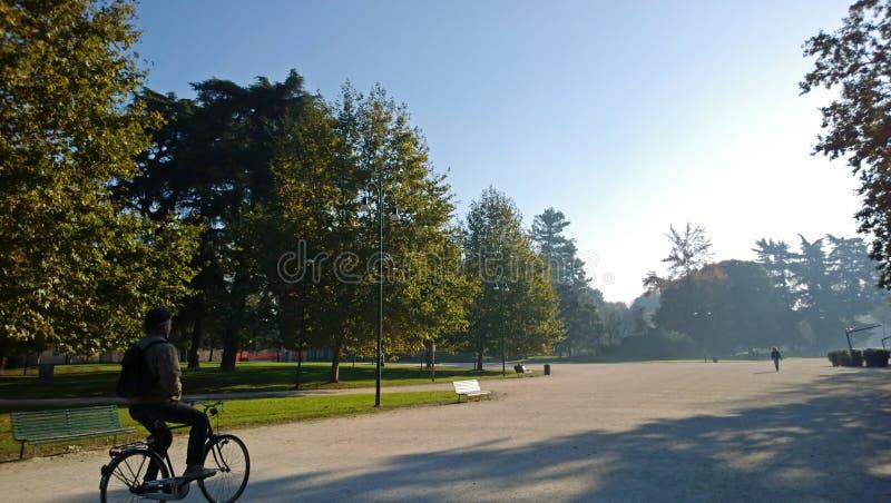 Um homem em uma bicicleta no parque na manhã fotografia de stock royalty free