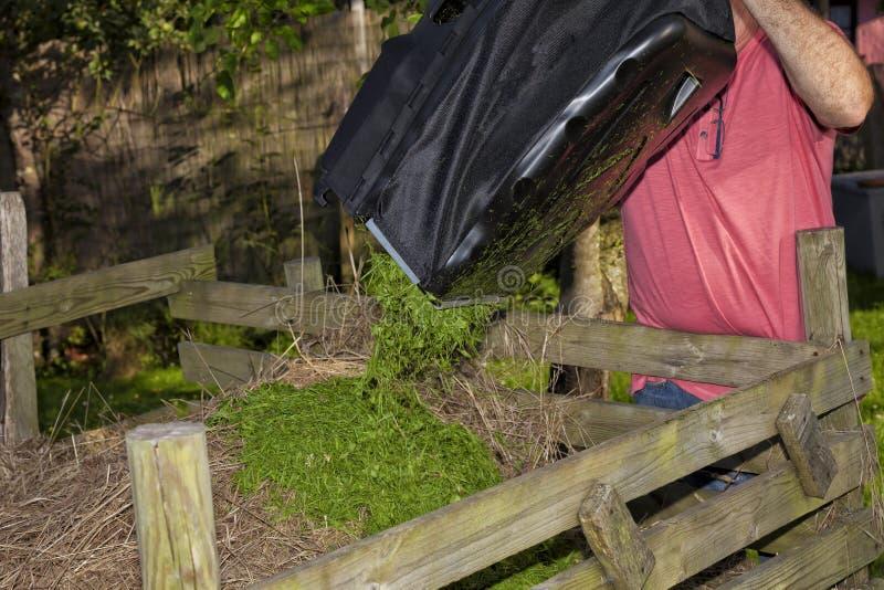 Um homem esvazia o saco de grama que cortou com o cortador de grama fotos de stock royalty free