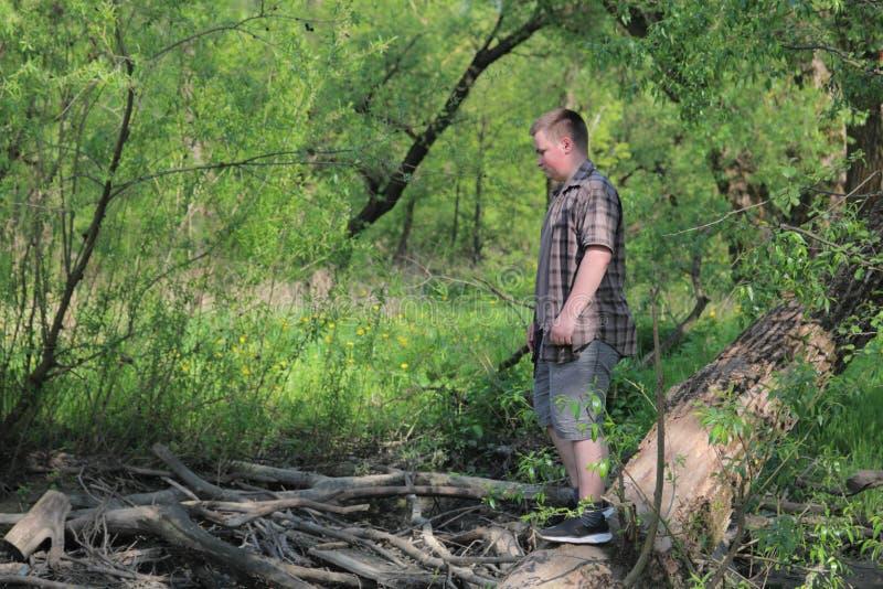Um homem gordo novo está no tronco de uma árvore deteriorada Perto do para-brisas No parque entre a folha verde-clara foto de stock royalty free