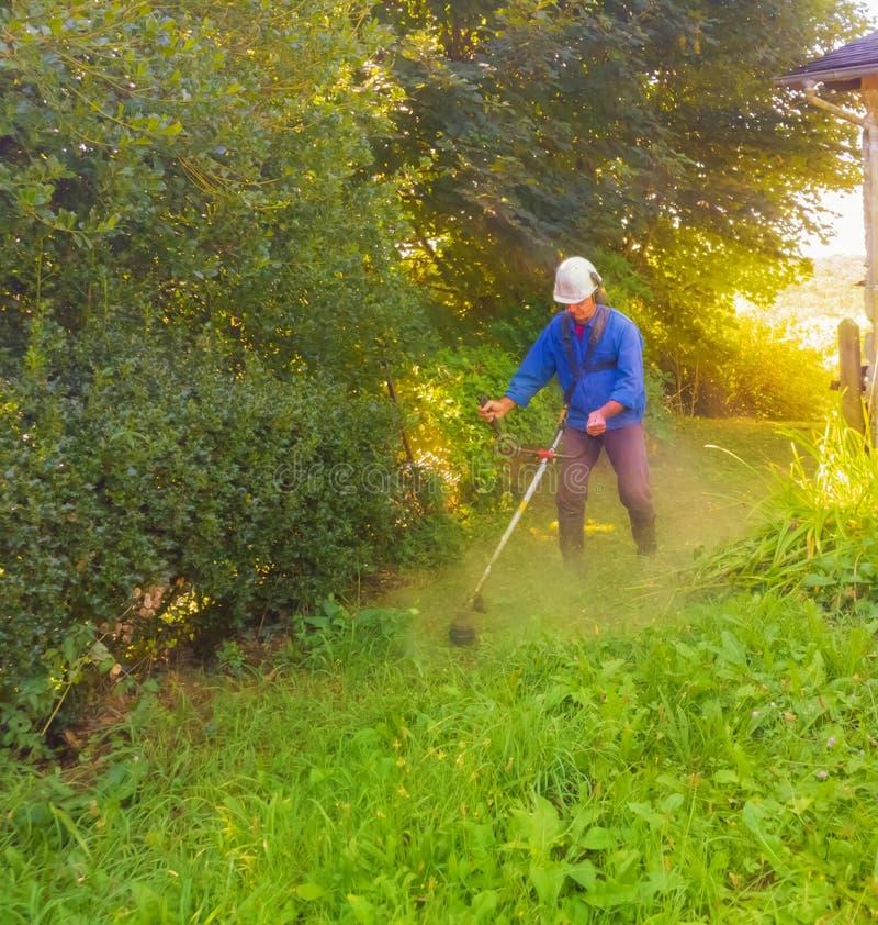 Um homem nos macacões sega a grama com um cortador de grama fotografia de stock