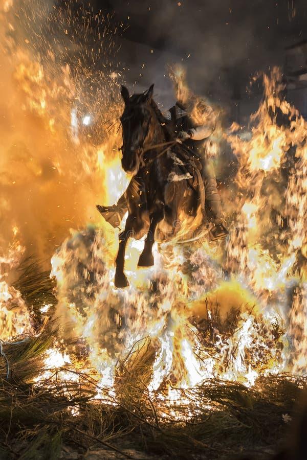 Um homem que monta seu throug de salto do cavalo o fogo foto de stock