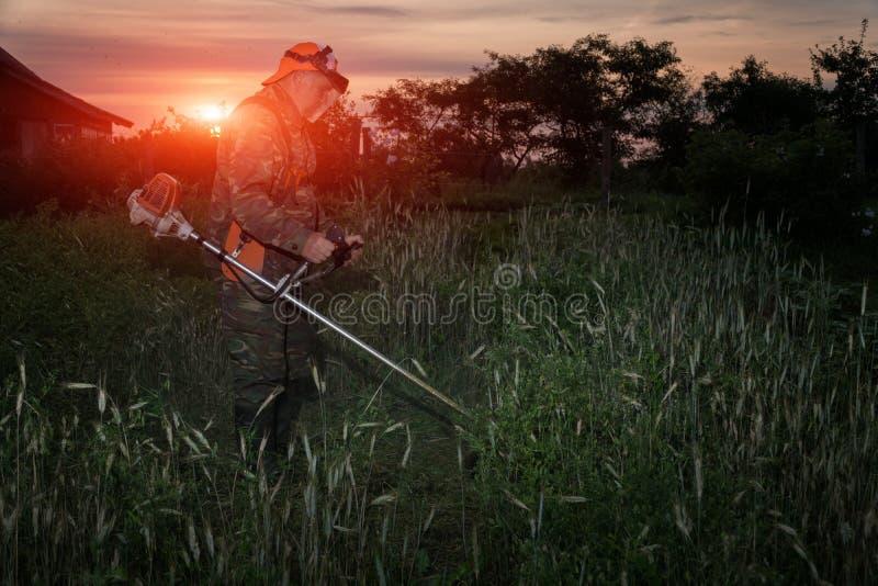 Um homem sega a grama no jardim com um ajustador no alvorecer imagens de stock royalty free