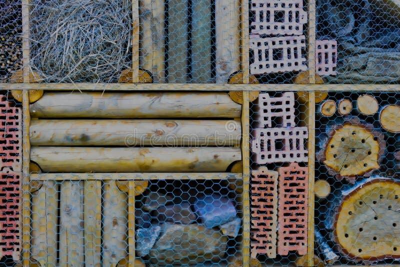 Um hotel da abelha do eremita fotografia de stock