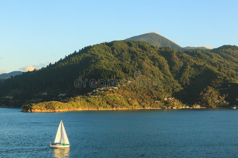 Um iate navega ao longo de uma rainha montanhosa Charlotte Sound da costa, Nova Zelândia foto de stock royalty free