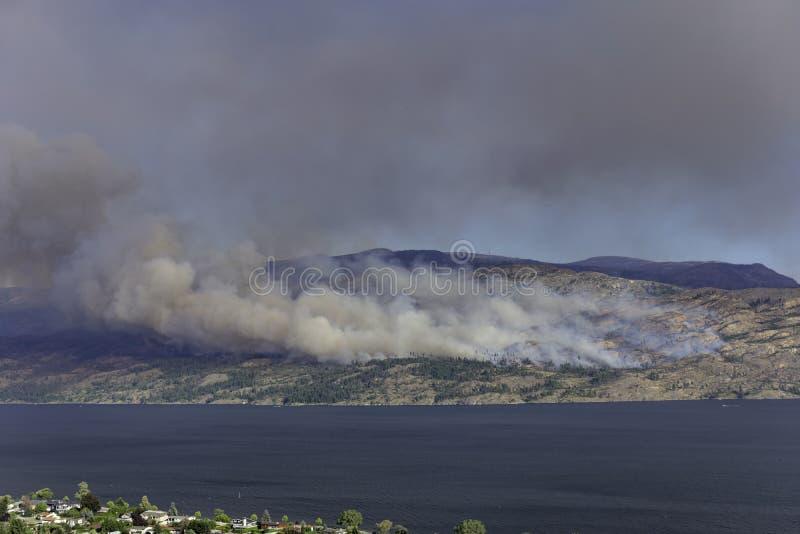Um incêndio florestal perto do Columbia Britânica Canadá de Pearchland fotos de stock
