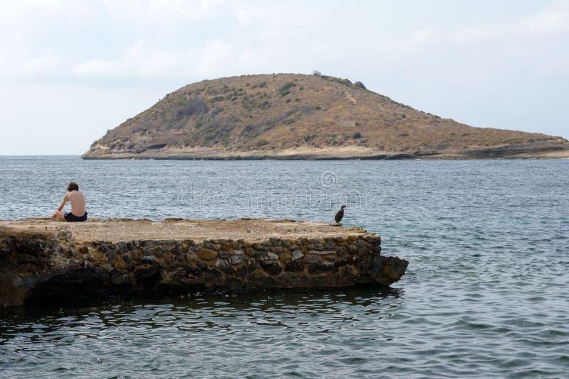 Um indivíduo novo e uma garça-real preta em uma pedra da praia de Magaluf encontram o alvorecer loneliness sadness Magaluf, Mallo fotos de stock royalty free