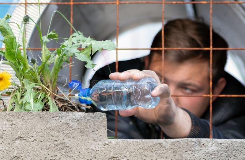 Um indivíduo novo que senta-se na prisão que molha de um crescimento de flor plástico do dente-de-leão da garrafa atrás de uma es imagem de stock royalty free