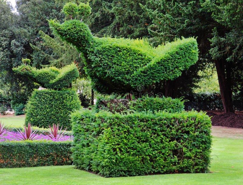 Um jardim ajardinado inglês formal imagens de stock royalty free
