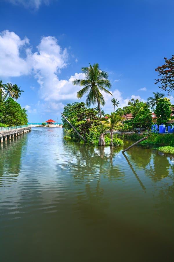 Um jardim com um rio com as árvores verdes na costa fotografia de stock royalty free