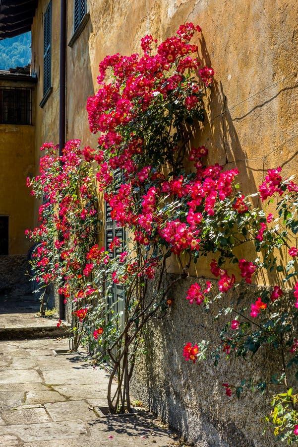 Um jardim italiano do estilo clássico em Tirano no italiano Valtellina imagem de stock