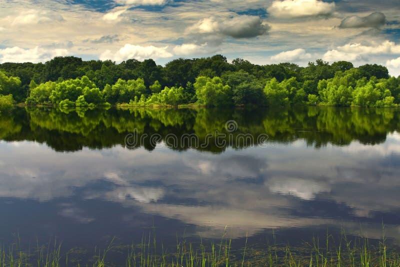 Download Um lago bonito e calmo foto de stock. Imagem de quiet - 10065126