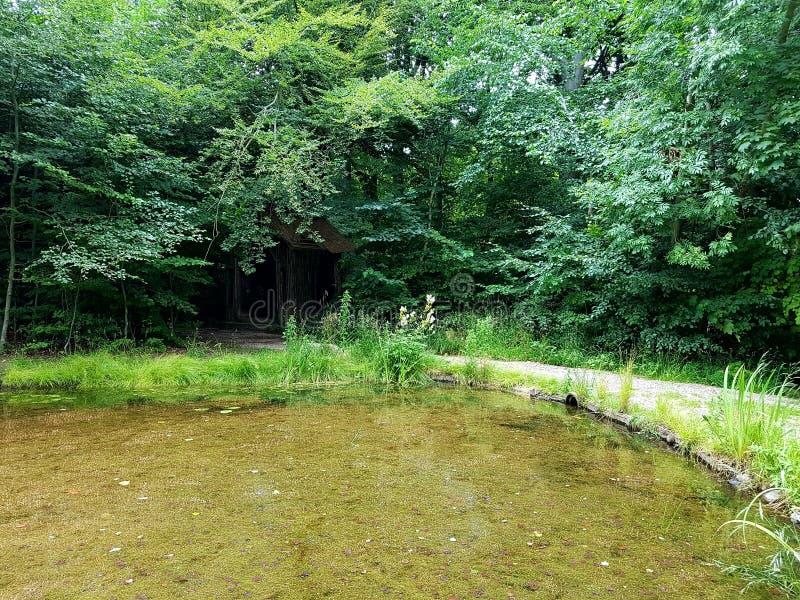 Um lago com uma casa de madeira escondida fotos de stock royalty free