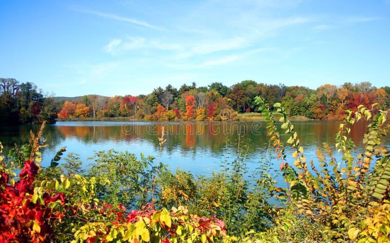 Um lago na queda imagens de stock